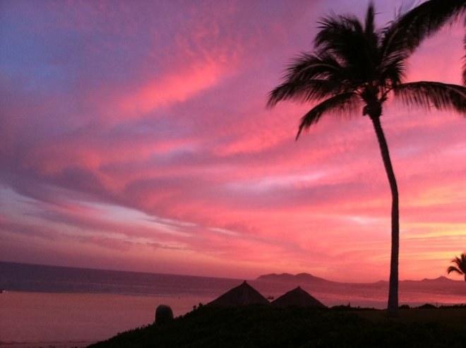 This perfectly pink sunset at Zoëtry Casa Del Mar Los Cabos is worthy of a postcard! Thanks for sharing, Alissa.