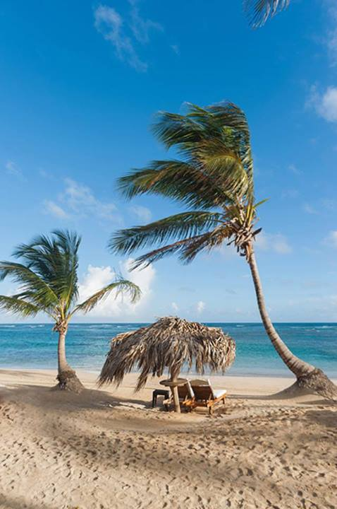The beach at Zoetry Agua Punta Cana is such a romantic spot.