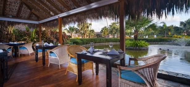agua.dining.image-gallery.zoapc_res_amaya_1gk-is-525